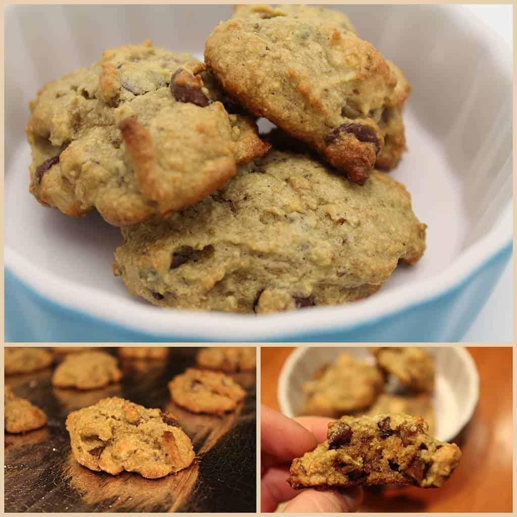 chocolate chip cookie recipe for lactation